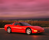 VET 01 RK0287 06