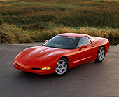 VET 01 RK0288 03