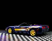 VET 01 RK0291 02