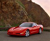 VET 01 RK0319 04