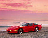 VET 01 RK0334 06
