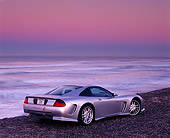 VET 01 RK0395 01