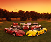 VET 01 RK0412 01