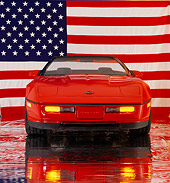 VET 01 RK0413 03