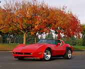 VET 01 RK0423 03