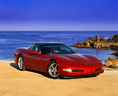 VET 01 RK0436 02