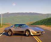 VET 01 RK0447 02
