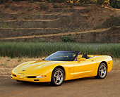VET 01 RK0458 02