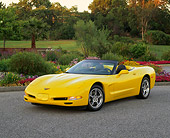 VET 01 RK0460 08