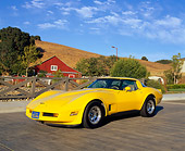 VET 01 RK0462 02
