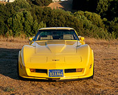 VET 01 RK0465 01