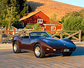 VET 01 RK0467 03
