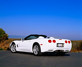 VET 01 RK0483 02