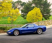 VET 01 RK0533 07