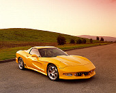 VET 01 RK0542 03