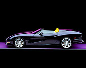 VET 01 RK0561 03