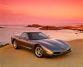 VET 01 RK0575 06