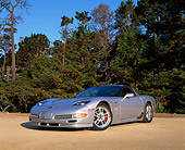 VET 01 RK0583 01