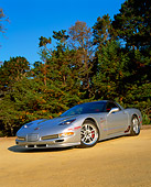 VET 01 RK0584 01