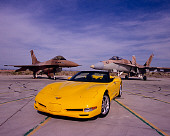 VET 01 RK0662 07
