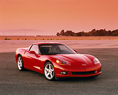 VET 01 RK0674 02