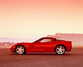 VET 01 RK0680 03