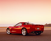 VET 01 RK0681 04