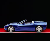 VET 01 RK0696 08