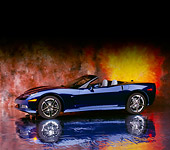 VET 01 RK0698 08