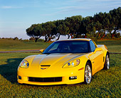 VET 01 RK0724 01