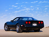 VET 01 RK0817 01