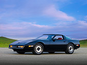 VET 01 RK0824 01