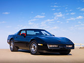 VET 01 RK0827 01