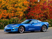 VET 01 RK0831 01