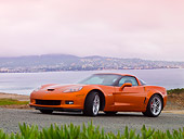 VET 01 RK0845 01