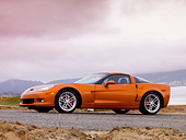 VET 01 RK0846 01
