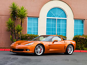 VET 01 RK0847 01