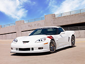 VET 01 RK0874 01