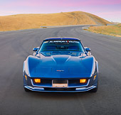 VET 01 RK0881 01