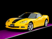 VET 01 RK0892 01