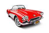VET 02 BK0013 01