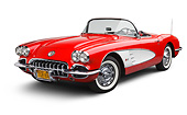 VET 02 BK0016 01