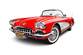 VET 02 BK0018 01