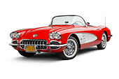 VET 02 BK0021 01