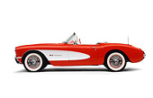 VET 02 RK0007 01