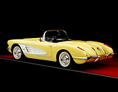 VET 02 RK0271 01