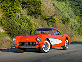 VET 02 RK0354 01
