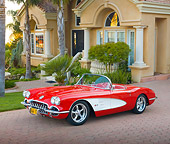 VET 02 RK0360 01