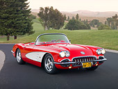 VET 02 RK0362 01