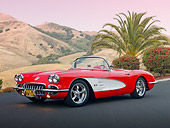 VET 02 RK0365 01